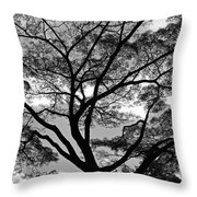 Branching Out In Bw Throw Pillow