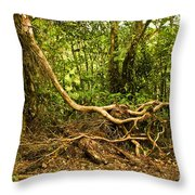 Branching Out In Costa Rica Throw Pillow by Madeline Ellis