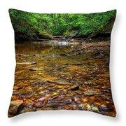 Brandywine Creek  Throw Pillow