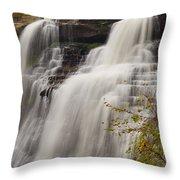 Brandywine Falls IIi Throw Pillow