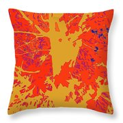Brandywine  Maple Fall Colors 4 Throw Pillow