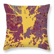 Brandywine  Maple Fall Colors 7 Throw Pillow