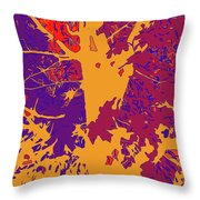 Brandywine  Maple Fall Colors 8 Throw Pillow