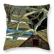 Brandywine Springhouse Throw Pillow