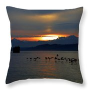 Brants At Sunset Throw Pillow