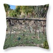 Brass Horseshoe Cross Throw Pillow