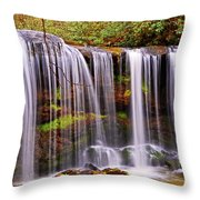 Brasstown Falls 005 Throw Pillow