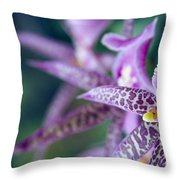 Bratonia Miltassia Charles M Fitch Izumi Orchids Throw Pillow