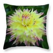 Brave And Crazy Throw Pillow