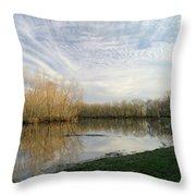 Brazos Bend White Egret Solitude Throw Pillow