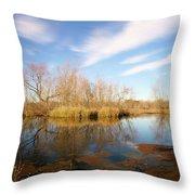 Brazos Bend Winter Bliss Throw Pillow