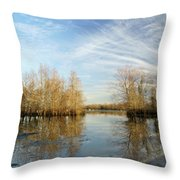 Brazos Bend Winter Reflections Throw Pillow