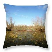 Brazos Bend Winter Wetland Throw Pillow