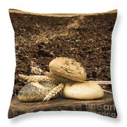 Bread And Wheat Ears. Plowed Land Throw Pillow by Deyan Georgiev