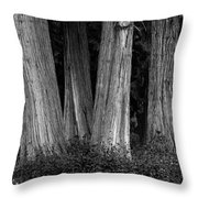 Breadth Of Trees Throw Pillow