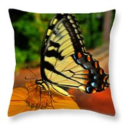 Breakfast At The Gardens - Swallowtail Butterfly 005 Throw Pillow