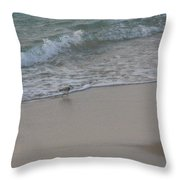 Breakfast At The Shore Throw Pillow
