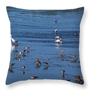 Breakfast Is For The Birds Throw Pillow