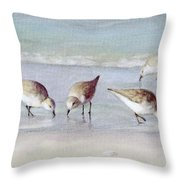 Breakfast On The Beach, Snowy Plover Sandpipers, Siesta Key, Wide-narrow Throw Pillow