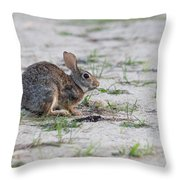 Breakfast Or Playtime Throw Pillow