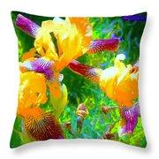 Breakfast Time Oj Irises Throw Pillow