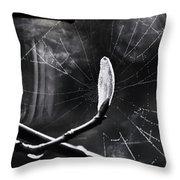 Breaking Light Throw Pillow