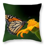 Breaktime Throw Pillow by April Wietrecki Green