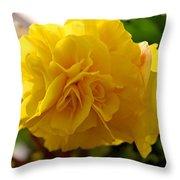 Breathtaking Begonia Throw Pillow