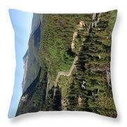 Breckenridge, Colorado Throw Pillow