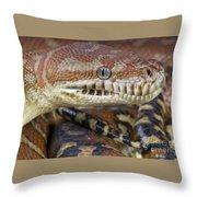 Bredl's Python Throw Pillow