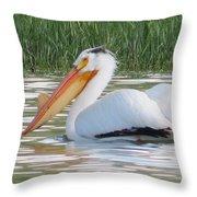 Breeding American White Pelican On Lower Sunshine Throw Pillow