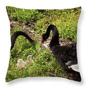 Breeding Pair Throw Pillow
