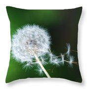 Breezy Dandelion Throw Pillow