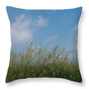 Breezy Day Throw Pillow