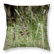 Breezy Summer 2 Throw Pillow