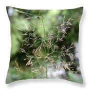 Breezy Summer Throw Pillow