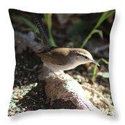 Breswick Wren On Tree Root 2 Throw Pillow