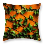 Brick And Leafs Throw Pillow