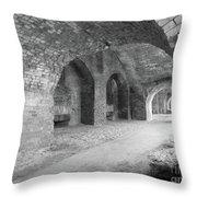 Brick Architecture  Throw Pillow