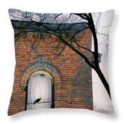 Brick Building Window With Bird Throw Pillow