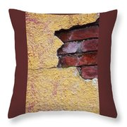 Brick Exposed Throw Pillow