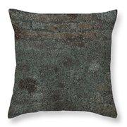 Brick Pillow I I I Throw Pillow
