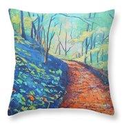 Brick Walk Throw Pillow