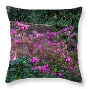 Brick Wall And Azalea Throw Pillow