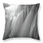 Bridal Gowns Throw Pillow by Wayne King