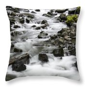Bridal Veil Outflow Throw Pillow