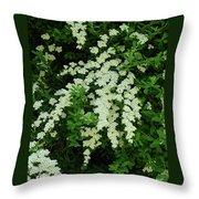 Bridal Wreath Throw Pillow