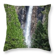 Bridalvail Fall And Raven Throw Pillow