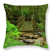 Bridge Across A River Is Part Of The Pa At Throw Pillow