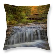 Bridge And Falls Throw Pillow